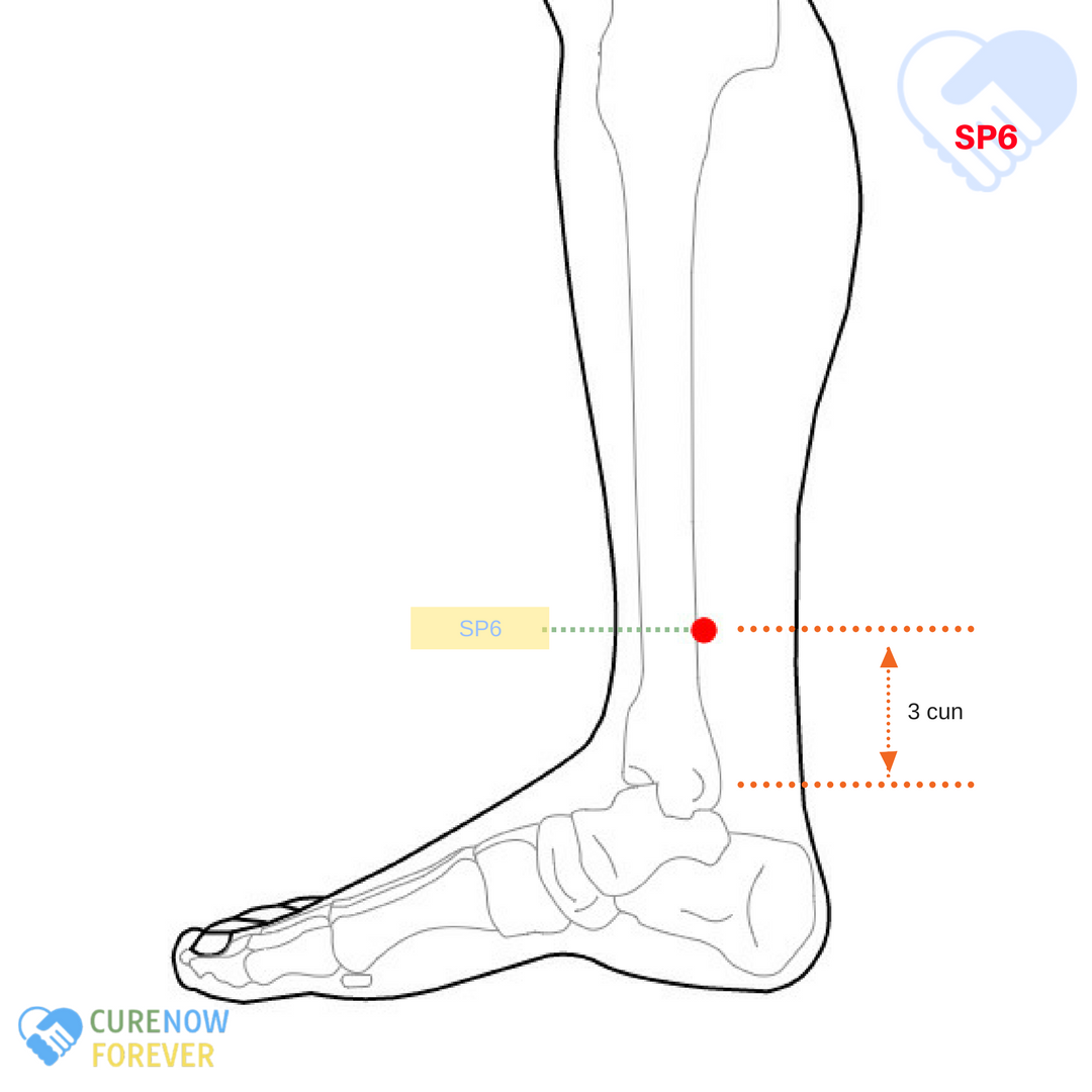 Leg acupuncture points : Massage south minneapolis